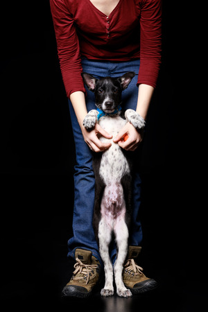 cropped view of woman with dark mongrel dog on hind legs isolated on black