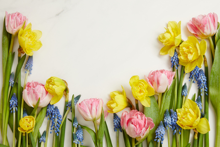 top view of fresh pink tulips, blue hyacinths and yellow daffodils on white background with copy space
