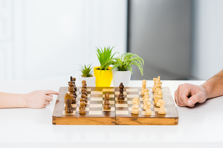 cropped view of man and boy playing chess at table with plants