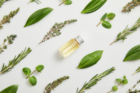 Flat lay with essential oil and fresh herbs on grey background