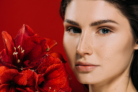 beautiful woman with freckles on face holding amaryllis flowers, isolated on red