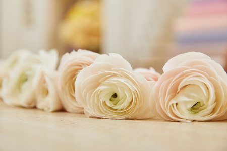close up of white peonies on table surface Stockfoto