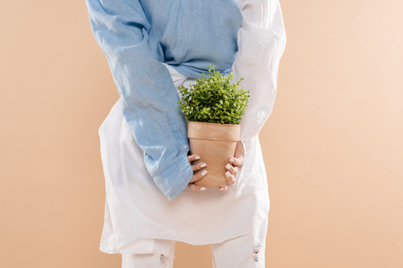 cropped view of young woman holding pot with plant isolated on beige, environmental saving concept
