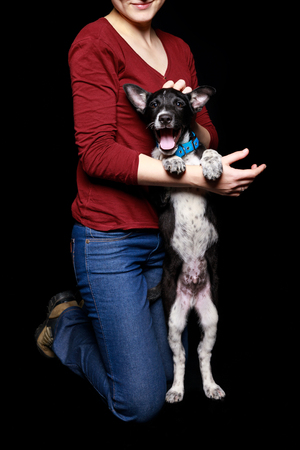 cropped view of woman in jeans and red sweater with dog in collar on hind legs isolated on black
