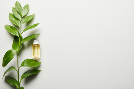 Top view of essential oil in bottle and green leaves on white background Foto de archivo