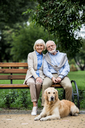 happy senior couple sitting on wooden bench and cute dog lying nearby on paved sidewalk