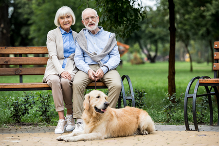 smiling senior couple sitting on wooden bench and cute dog lying nearby