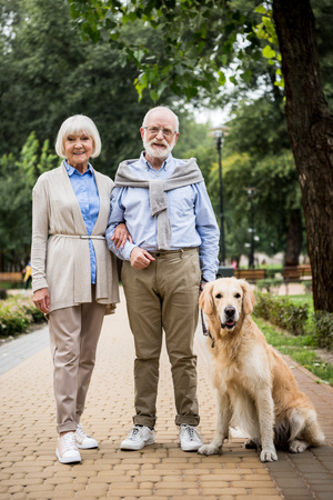 happy smiling senior couple with adorable dog in park
