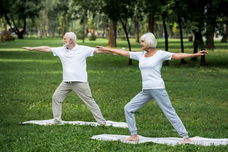 senior couple standing in warrior II poses on yoga mats in park