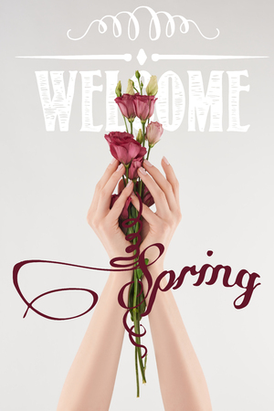 cropped view of woman holding bouquet of purple eustoma flowers on white background with welcome spring illustration