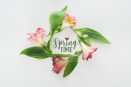 top view of wreath with pink alstroemeria flowers and green leaves on white background with springtime illustration Stock Photo