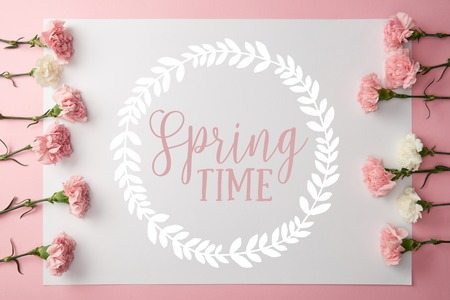 top view of beautiful pink and white carnation flowers and card with springtime lettering in round frame on pink background