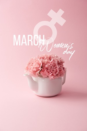 pink carnation flowers in white teapot on pink background with womens day lettering Stock Photo