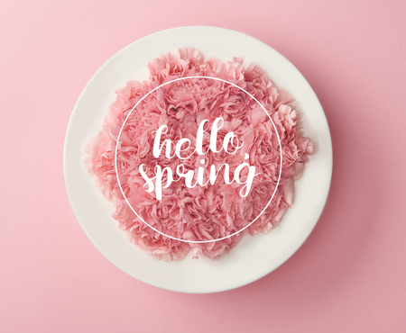 top view of pink carnation flowers in white plate on pink background with hello spring lettering