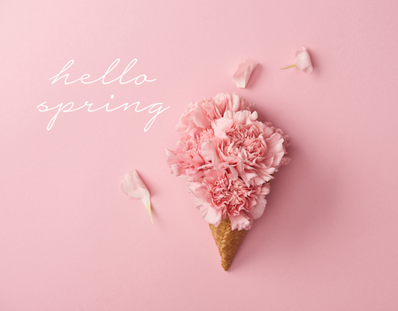 top view of pink carnation flowers on pink background with hello spring illustration