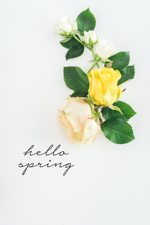 top view of roses composition on white background with hello spring lettering