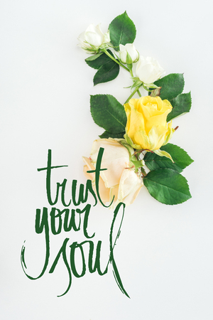 top view of roses composition on white background with trust your soul lettering