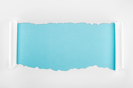 ripped white textured paper with curl edges on blue dotted background