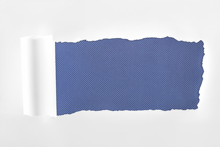 ragged textured white paper with rolled edge on blue background Stock Photo