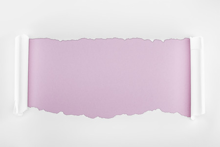 ripped white textured paper with curl edges on light purple background