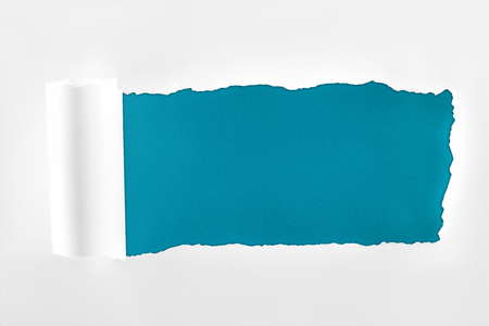 tattered textured white paper with rolled edge on deep blue background