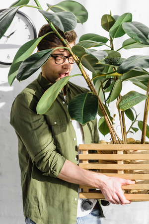 cunning man in green shirt and glasses holding pot with plant near brick wall in office