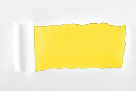 tattered textured white paper with rolled edge on yellow background Reklamní fotografie