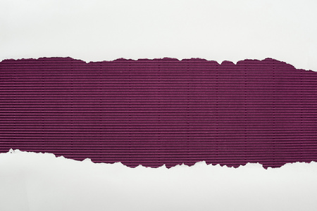 ripped white textured paper with copy space on purple striped background Stockfoto