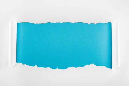 ripped white paper with curl edges on blue background