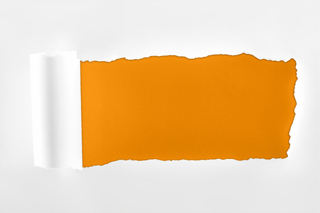 ragged textured paper with rolled edge on orange background