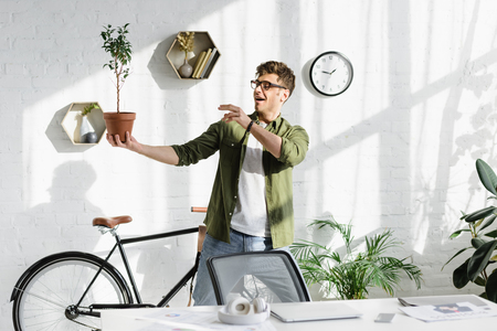 tricky handsome man in green shirt and jeans holding pot with plant in office Stock Photo