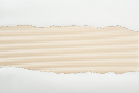 ripped white textured paper with copy space on ivory striped background