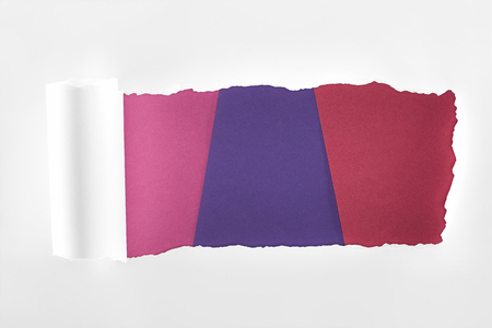 ripped textured white paper with rolled edge on colored background