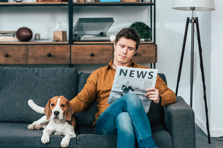 Concentrated man reading newspaper on sofa and stroking beagle dog