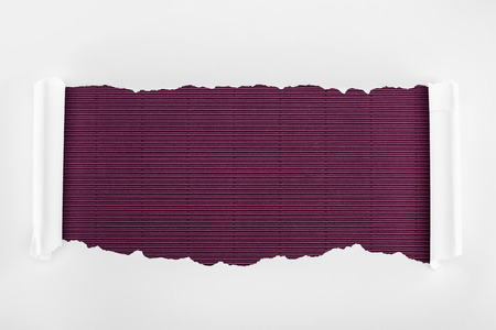 ripped white textured paper with curl edges on purple striped background Stockfoto - 120136773