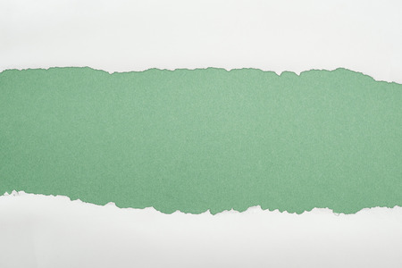 ragged white textured paper with copy space on green background