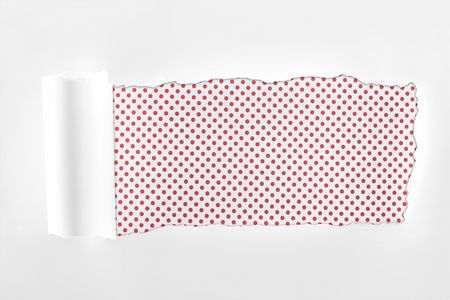 tattered white paper with rolled edge on pink dotted background Banque d'images - 120138426