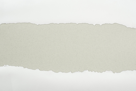ripped white textured paper with copy space on grey background Фото со стока