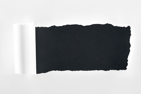 ripped textured white paper with rolled edge on black background