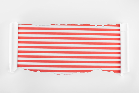ragged textured white paper with curl edges on red striped background