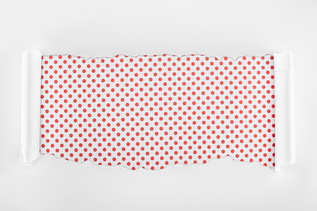 ripped white textured paper with curl edges on red dotted background Фото со стока - 120416331