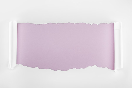ragged textured white paper with curl edges on light purple background Stockfoto - 120416144