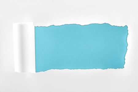 ripped textured white paper with rolled edge on blue background Imagens
