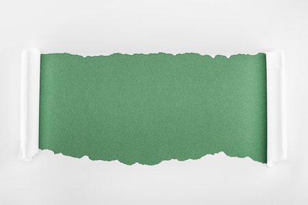 ragged textured white paper with curl edges on green background 版權商用圖片