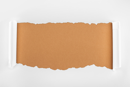 ripped white paper with curl edges on brown background Фото со стока