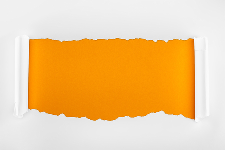 ripped textured white paper with curl edges on orange background Stock Photo