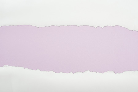 ragged white textured paper with copy space on light purple background