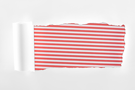 ragged textured white paper with rolled edge on red striped background Imagens