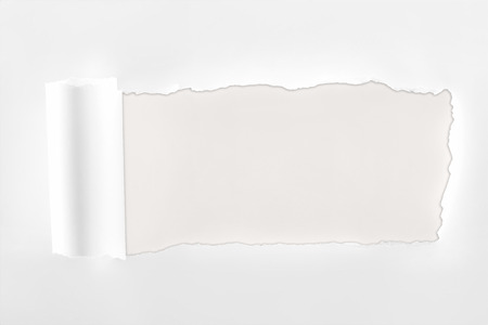 ripped textured white paper with rolled edge on white background