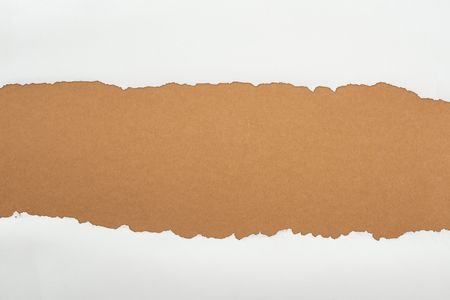 ragged white textured paper with copy space on brown background
